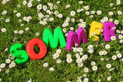 Sommer Schriftzug in Blumenwiese